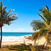 Coral View beach
