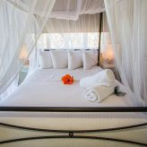 Double Bed with Canopy