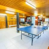 A Lure Rumpus Ping Pong