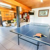 A Lure ping pong table